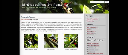 PTYBirds.com  Blog with pictures of birds from Panama